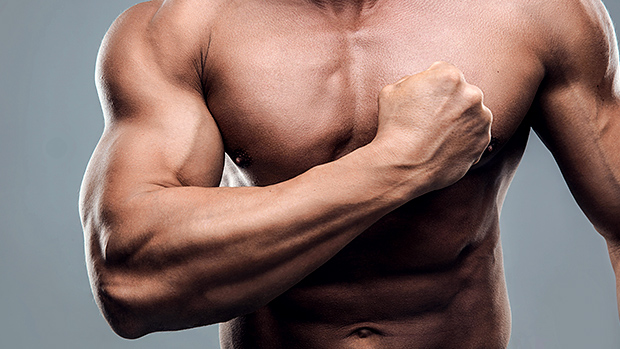 Muscle power might be key to long Life